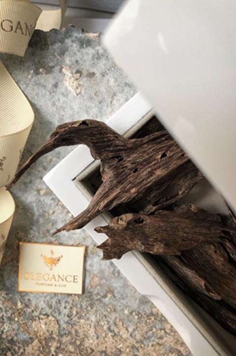 Elegance Parfums & Oud
